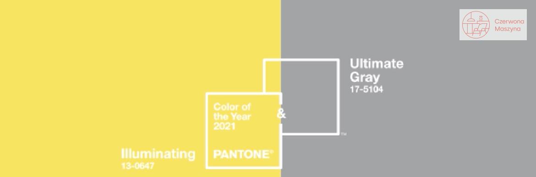 Ultimate Gray & Illuminating - kolory Pantone
