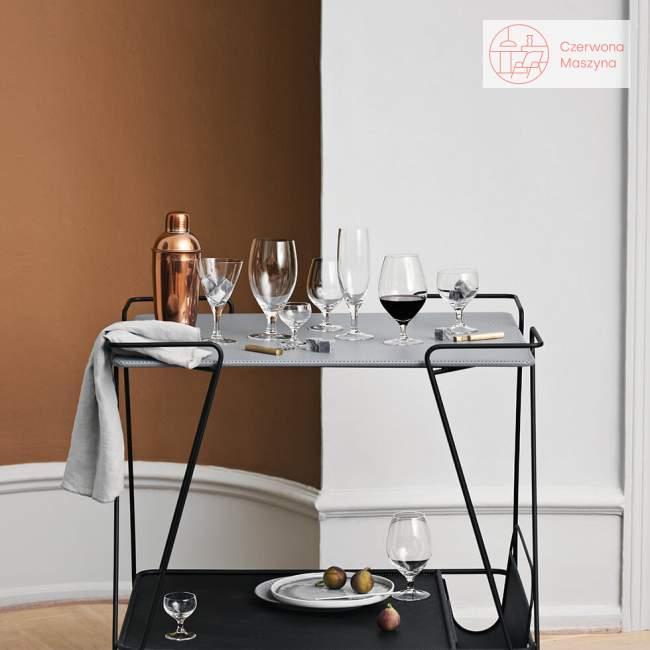 Kieliszki do wódki 6 szt. Holmegaard Royal Arne Jacobsen