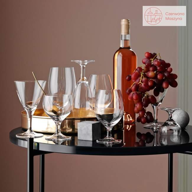 Kieliszki koktajlowe 6 szt. Holmegaard Royal Arne Jacobsen