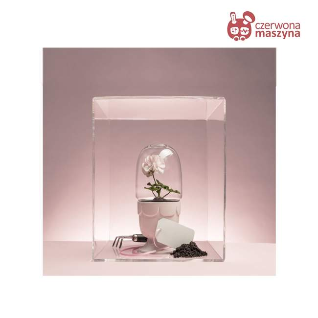 Doniczka z kloszem Sagaform Green, różowa