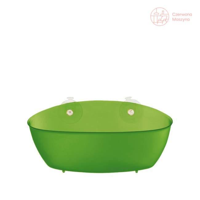 Pojemnik łazienkowy Koziol Splash zielony przezroczysty