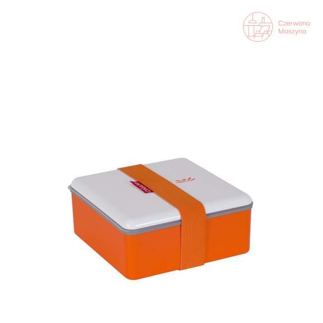 Pojemnik na lunch Omami Color 16 x 16 cm, pomarańczowy