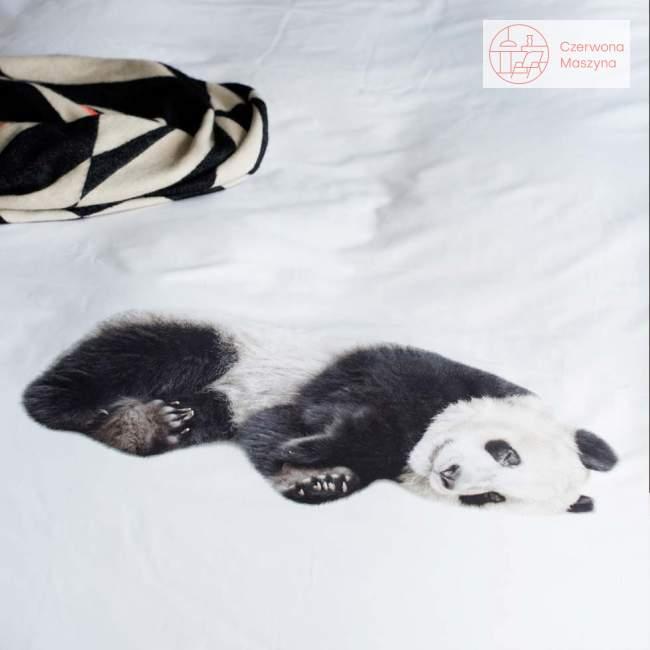 Pościel Snurk Lazy Panda 200 x 200 cm