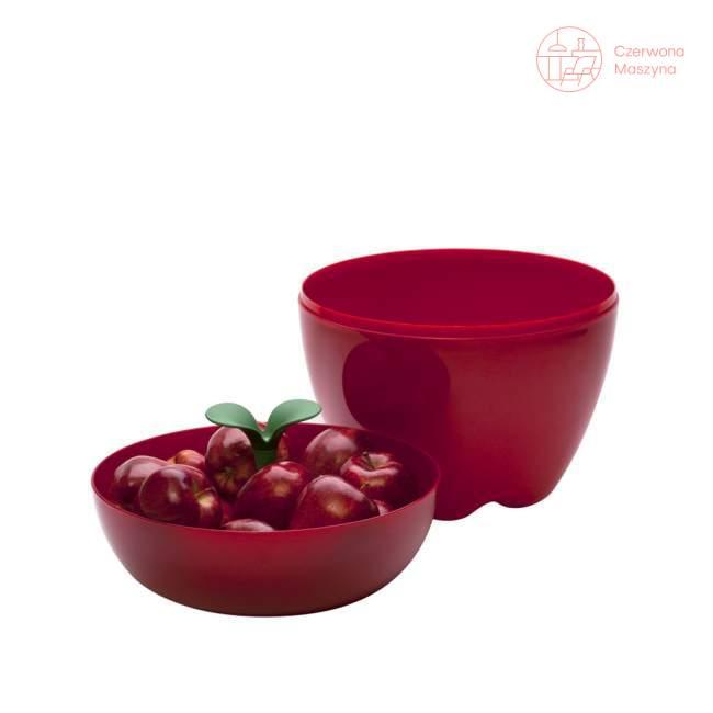 Pojemnik na jabłka Qualy Happle czerwony