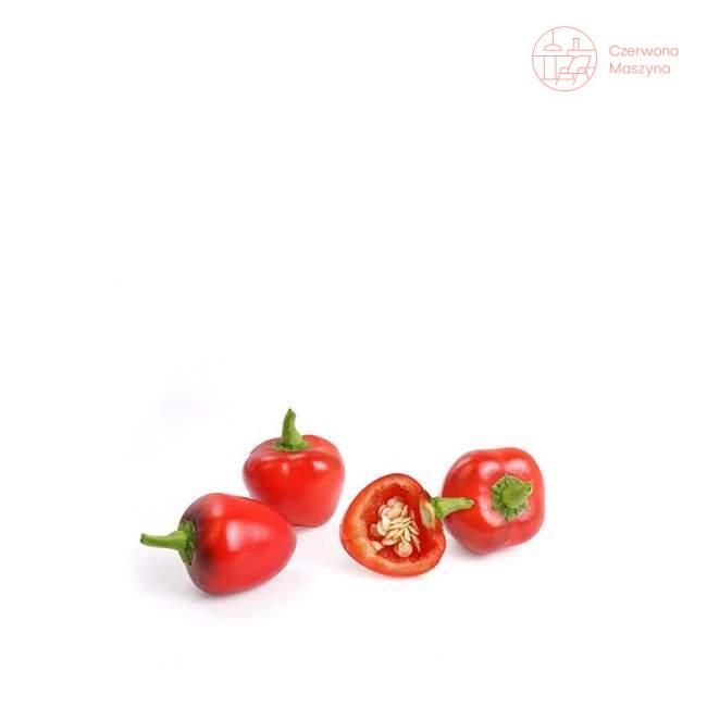 Wkład nasienny Veritable Lingot Czerwona mini-papryka