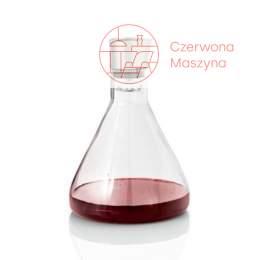 Karafka do wina z dekanterem Blomus Delta 2 l