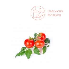 Wkład nasienny Veritable Lingot Pomidor koktajlowy