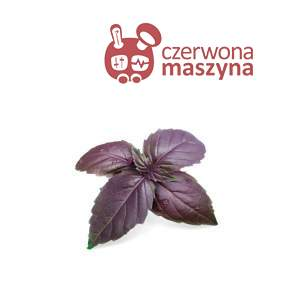 Wkład nasienny Veritable Lingot Bazylia purpurowa