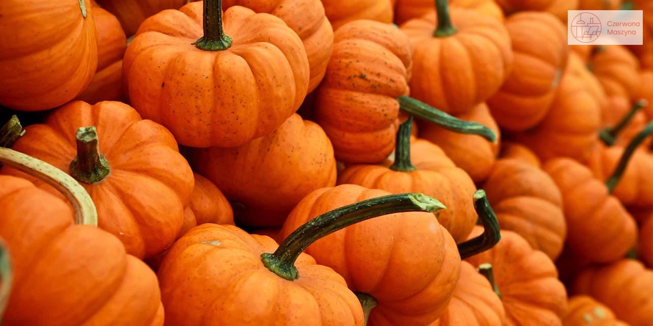Jesienny stół - dynie