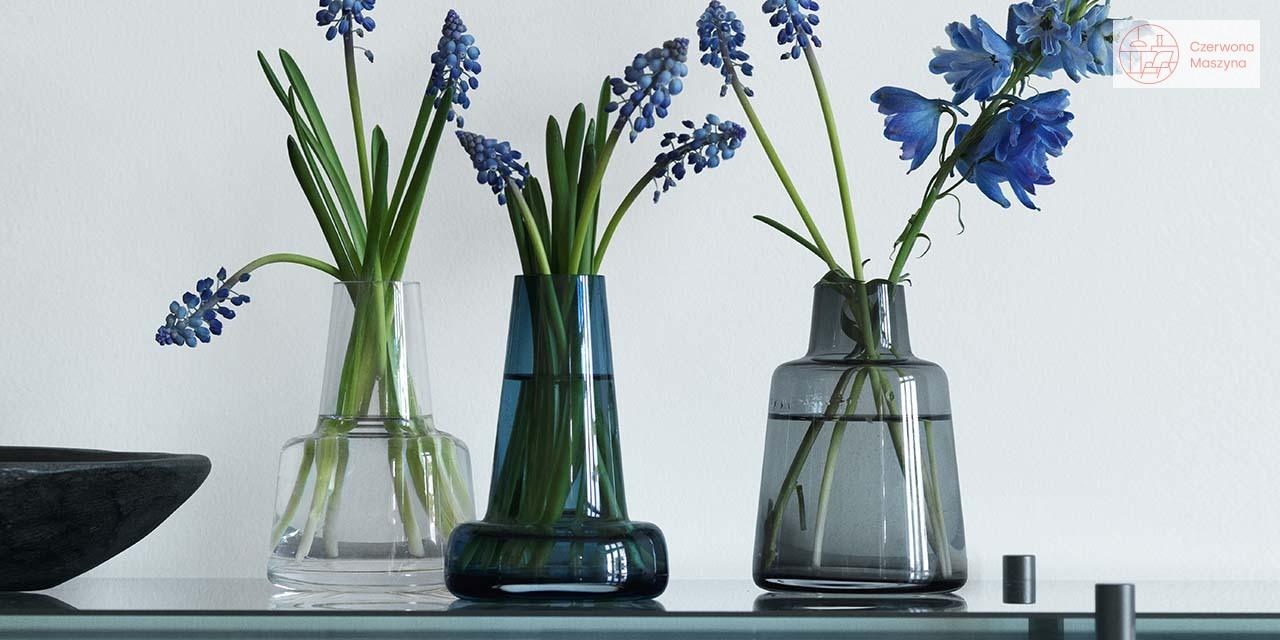 Wazony do kwiatów ciętych Holmegaard