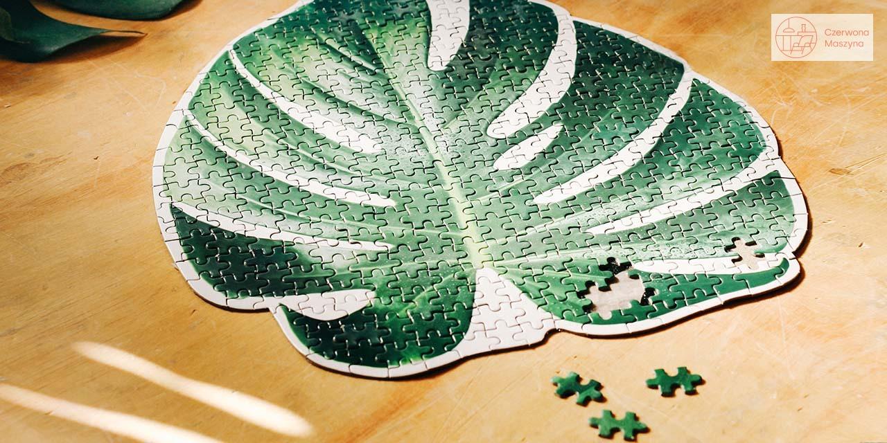 Kolorowe Puzzle Doiy - powrót do świata dziecka